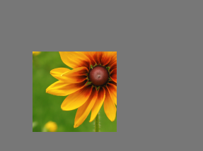 Previewback flower gray.png